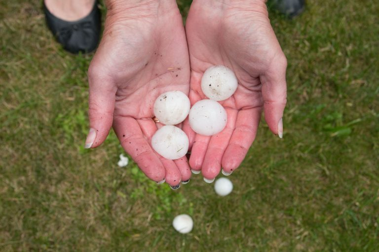 Picture of blogpost How To Handle A Hail Claim