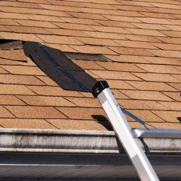 Image for Signs You Need a New Shingle Roof post