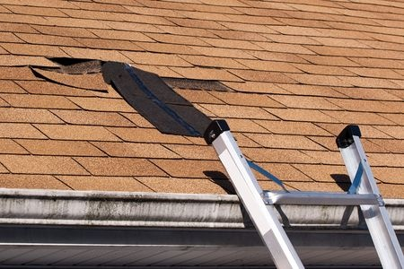 Picture of blogpost Signs You Need a New Shingle Roof