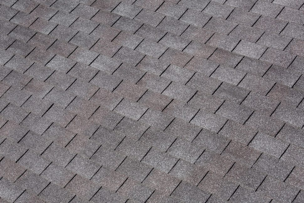 Picture of Asphalt Shingle Roof